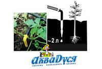 Крапельний полив у вашій теплиці, на ділянці або городі без проблем.
