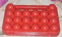 Лоток для яиц ( 20 шт.)