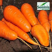 Морковь Санта Круз F1 / Santa Cruz F1 от Семинис (Seminis), 1 млн. семян
