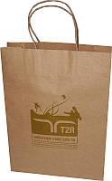 Пакет бумажный крафт бурый с логотипом №6 (250х370х80)