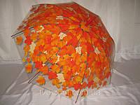 Женский  зонтик трость прозрачный  дождливая пора, фото 1