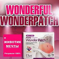 Пластырь для похудения Wonder Patch Belly Wing