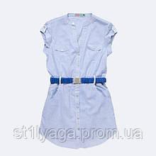 Удлиненная блузка из хлопка в мелкую синюю полоску