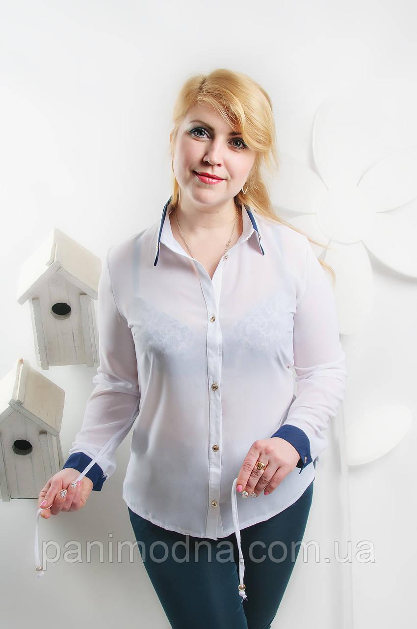 """Блуза """"Офисная """"- креп  шифон от производителя"""