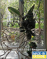 Лягушка-царевна, подставка на 3 кольца для орхидей, фото 1