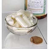 Экстракт бамбука Swanson, 300 мг, 60 капсул, фото 2