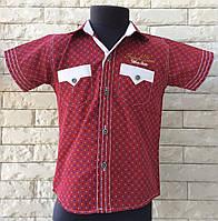 Рубашка 5-7 лет с коротким рукавом