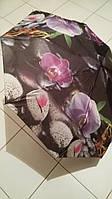 Зонт женский Feeling Rain полуавтомат Орхидея