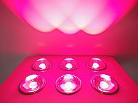 Фитопанель для растений 200W 2LED - LED-Expert: компьютерная и бытовая техника (телевизоры, ноутбуки, планшеты), фитолампы для растений в Киеве