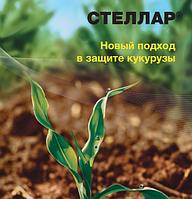 Гербицид Стеллар® - Басф 10 л, водный раствор