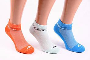 Носки спортивные сетка «Adidas» 35-41р. Ассорти