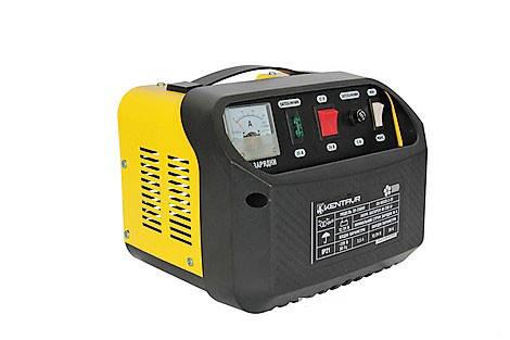 Зарядное устройство Кентавр ЗП-250НП, фото 2