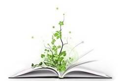Краткий ландшафтный словарь