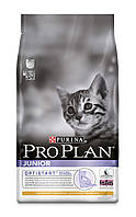 [ ProPlan Cat Junior Chicken&Rice 1,5 кг для кошенят  ] Корм Про план з куркою та рисом
