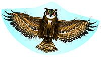 Воздушный змей Eule Сова Paul Guenter (1193)
