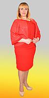 Костюм женский платье и пиджак больших размеров  1292 (Л.Ю.Б.)