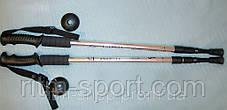 Палки для скандинавской ходьбы и трекинга (55-110 см) Energia, фото 2