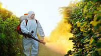 Традиционные культуры или ГМО: что выгоднее в плане гербицидов?