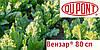 Гербицид Вензар® 80 СП  - Дюпон 10 кг, смачиваемый порошок