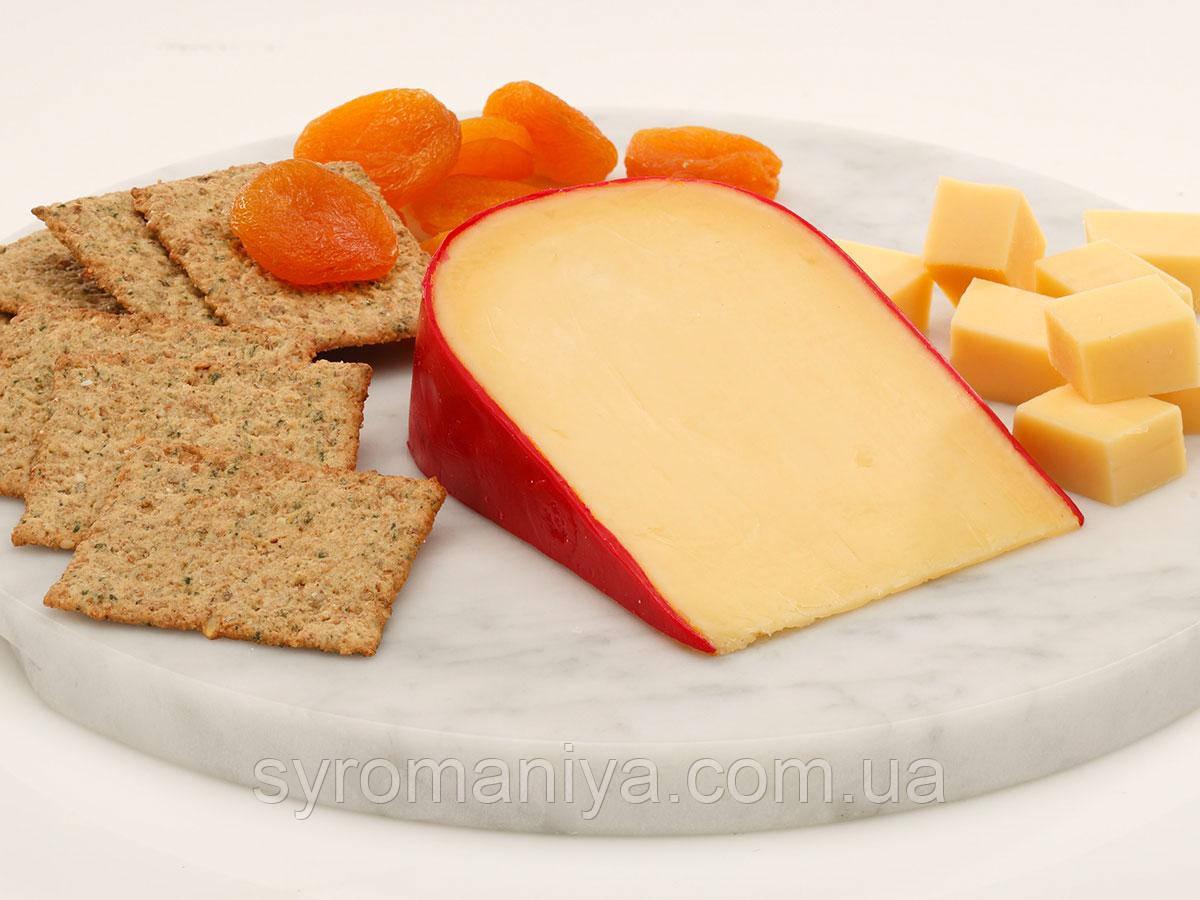 Закваска + фермент для сыра Гауда