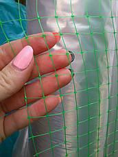 Сетка пластиковая зеленая для заборов и ограждения домашних животных, на метраж, 2 м ширина, фото 3