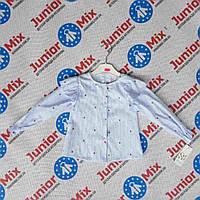 Детская рубашка в в мелкую полосочку на девочку ИТАЛИЯ