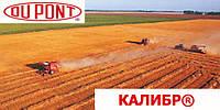 Гербицид Калибр® - Дюпон 0.5 кг, водно-диспергируемые гранулы