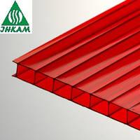 Сотовый поликарбонат Vizor (Визор) 6мм красный