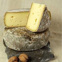 Закваска + фермент для сыра Томме