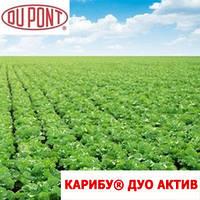 Гербицид Карибу® Дуо Актив - Дюпон 2 кг, водорастворимые гранулы