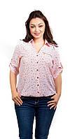 Женская летнеяя рубашка (блузка) со звездочками розовая, фото 1