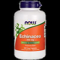 NOWЭхинацеяEchinacea 400 mg (250 veg caps)