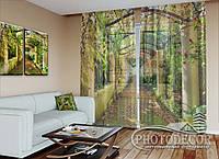 """ФотоТюль """"Зеленая арка"""" (2,5м*3,75м, на длину карниза 2,5м)"""