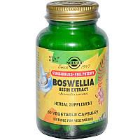 Solgar, Экстракт смолы босвеллии, 60 растительных капсул, Boswellia Resin Extract