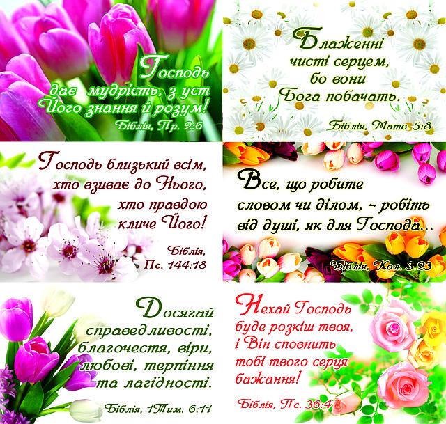 Наклейки №2 Квіткові цитати з Біблії