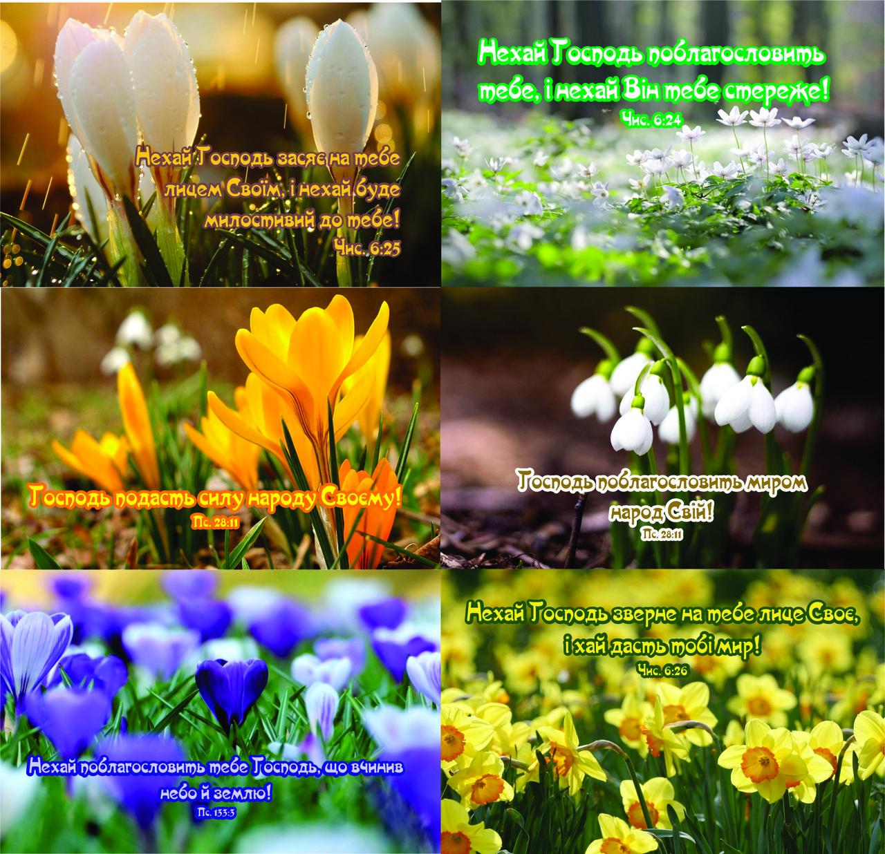 Наклейки №30  Весна