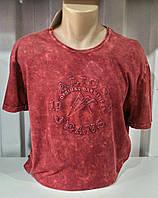 Мужская футболка Алико красная