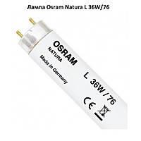 Лампы Osram Natura L 36W/76 для мяса