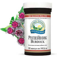 Репйник /Burdok NSP/При воспалительных заболеваниях почек,печени и желчного пузыря.