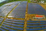 У США деякі фермери отримують більше прибутку від сонячних батерей, ніж від врожаю