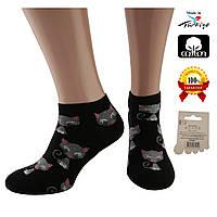 Носки женские хлопок короткие черные с рисунком котики Ж-100010