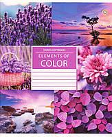 """Тетрадь школьная 96 л.клетка """"Color nature"""""""