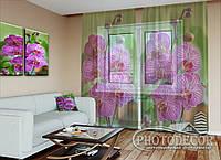 """ФотоТюль """"Малиновые орхидеи на зеленом"""" (2,5м*4,5м, на длину карниза 3,0м)"""