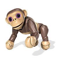 Zoomer Интерактивная игрушка-обезьянка шимпанзе Interactive Robot Pet Chimp