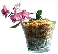 Субстраты для орхидей, мох сфагнум