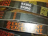 Ремень зубчатый BX-850 Excellent (Ремень на культиватор)