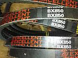 Ремінь зубчастий BX-850 Excellent (Ремінь на культиватор), фото 6