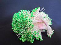 Тайские тычинки, ЗЕЛЕНО-БЕЛЫЕ, каплевидные на белой нити,  23-25 нитей, 50 головок