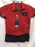 Костюм для мальчика рубашка+шорты для мальчика 1-3 года