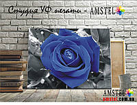 УФ печать на холсте, картинка синяя роза